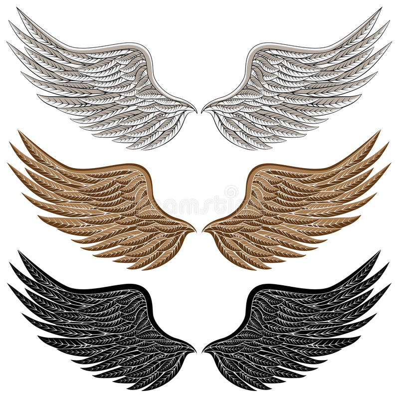 Detailed Bird Wings royalty free illustration