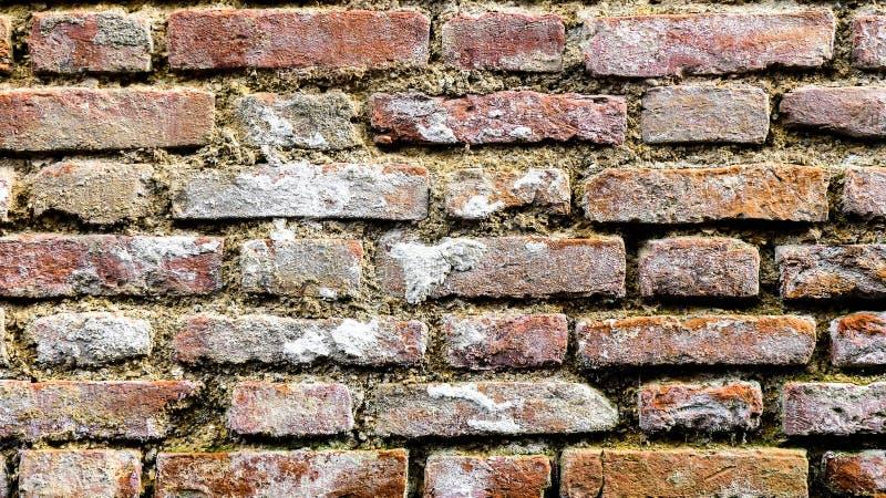 Brick Wall with Round Window Vienna, Austria royalty free stock image