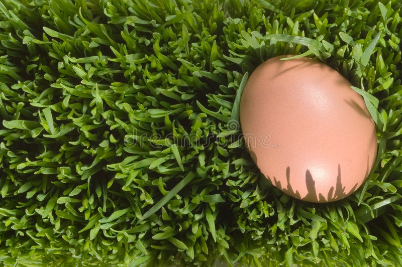 A Detailed Close Up Of A Brown Egg, Nestled In The Green Grass Royalty Free Stock Photo