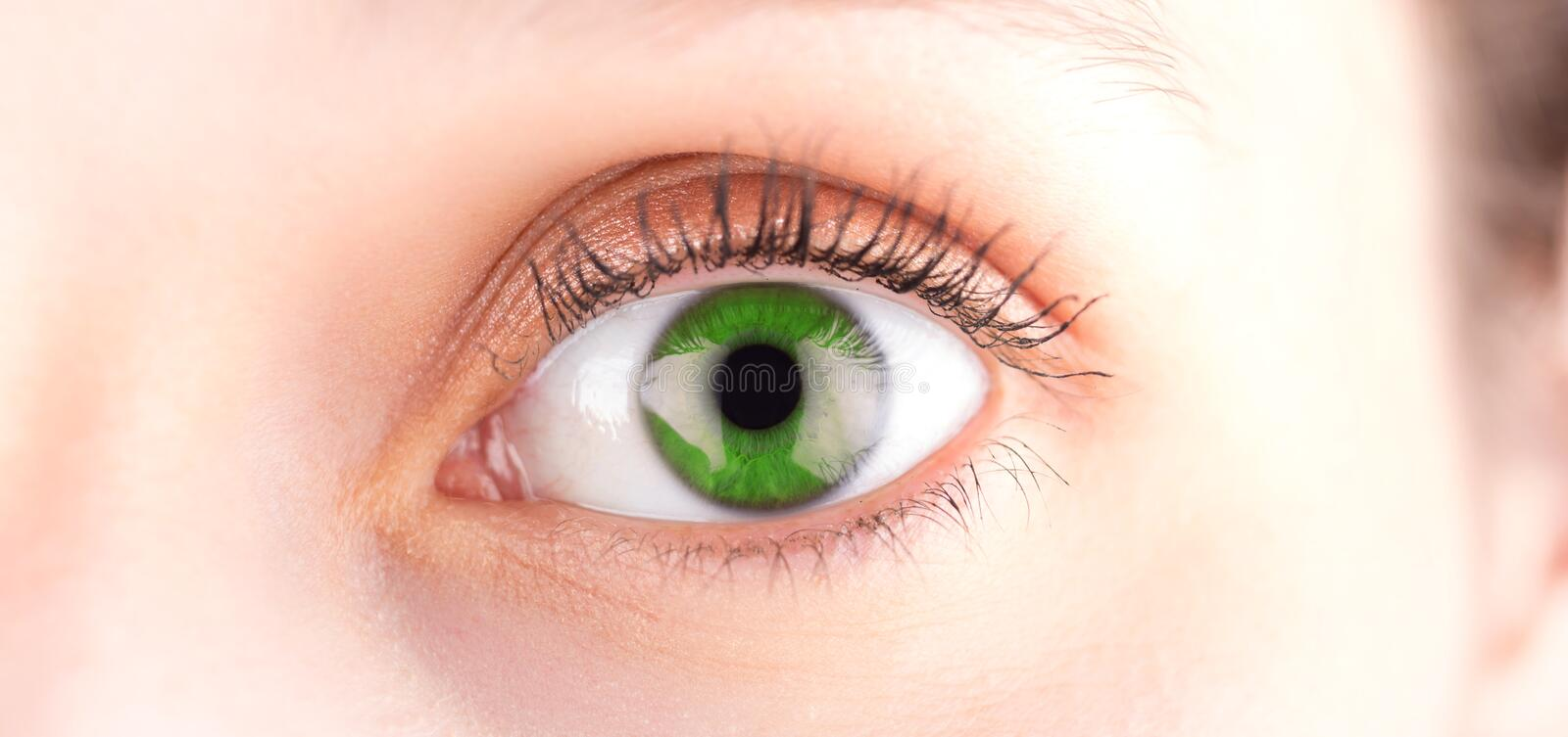 Detailed close up of an green eye in high definition. Detailed close up view of an green eye in high definition royalty free stock photos