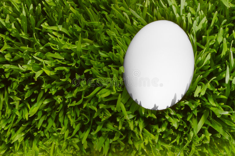 Download A Detailed Close Up Of A White Egg, Nestled In The Green Grass W Stock Photo - Image: 479744