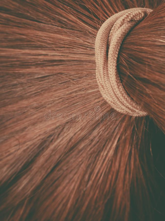 Detailed closeup of brown hair in ponytail. Detailed close up of brown, dark blonde hair in ponytail with band. Hairdo surface stock photography