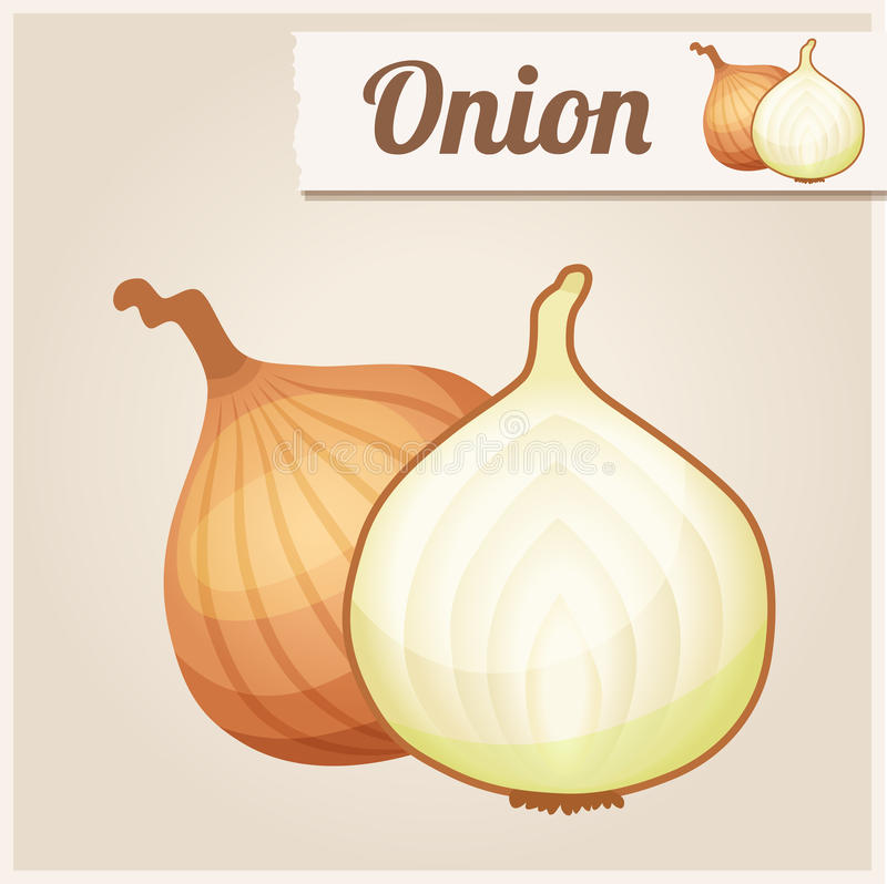 Detailed Icon. Onion royalty free illustration