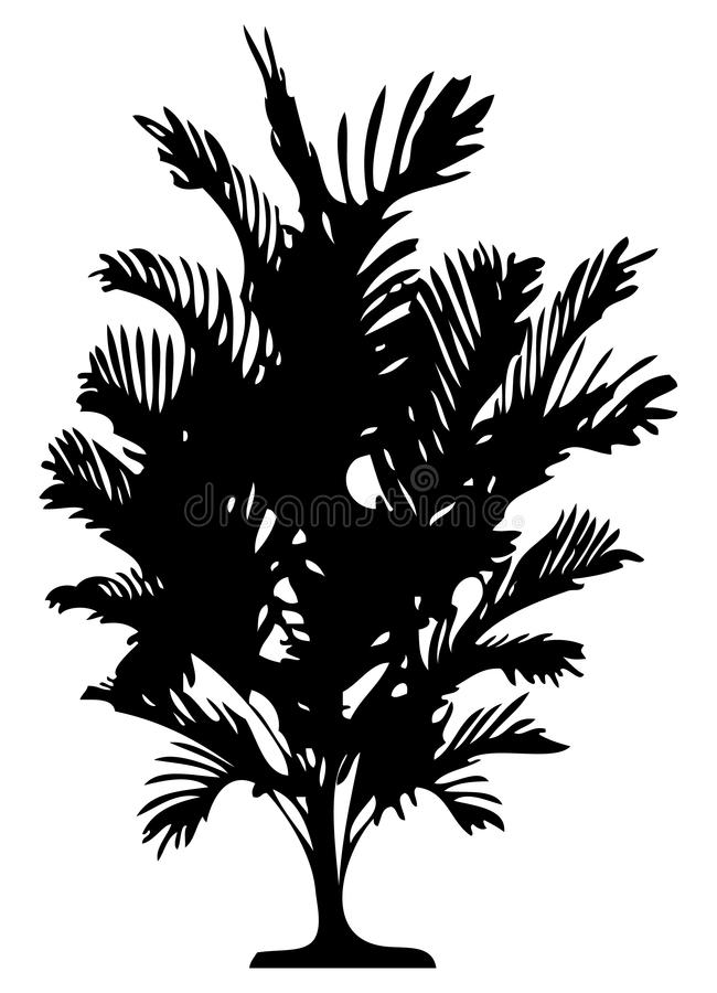Download Detailed palm tree stock vector. Image of elements, contour - 3981269