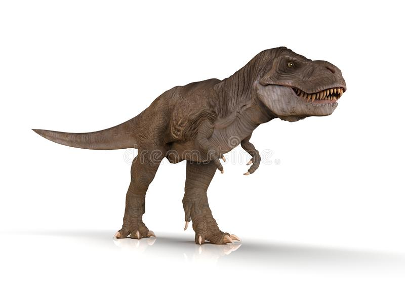 Detailed Tyrannosaurus Rex Dinosaur isolated. Detailed image of a T-rex dinosaur walking on a white background vector illustration