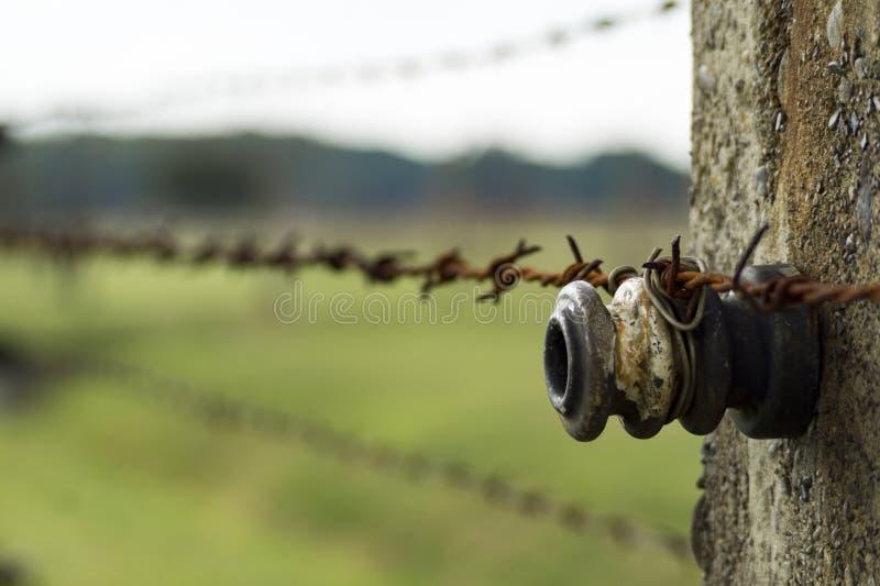 Auschwitz Birkenau. Detailed view of barb wire fence in concentration camp. Auschwitz Birkenau, aka Oswiecim Brzezinka, Poland, Europe stock photos