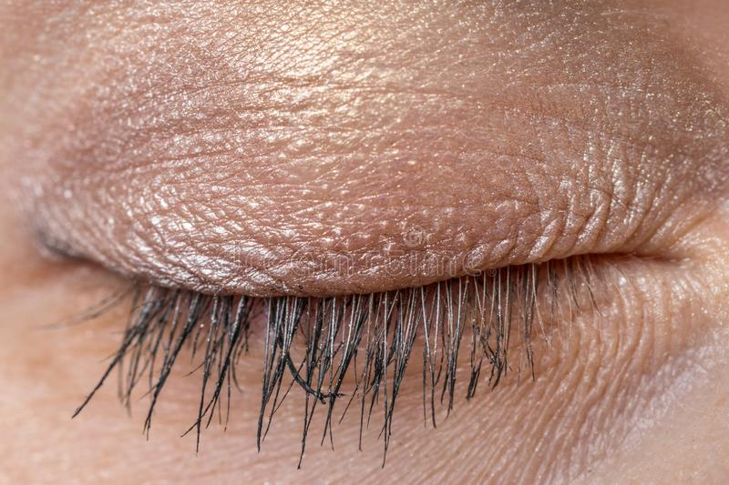 Detailed view of closed eye of woman royalty free stock photo