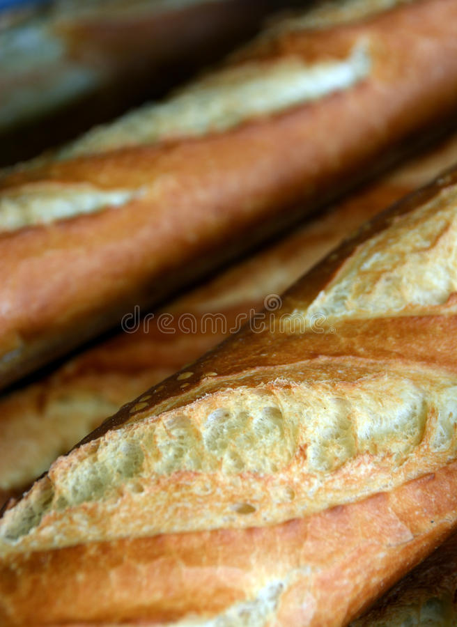 Detailed View of Fresh Baked French Loaves for Sale. royalty free stock photos