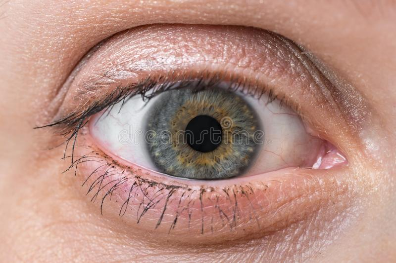 Detailed view of open eye of woman stock photography