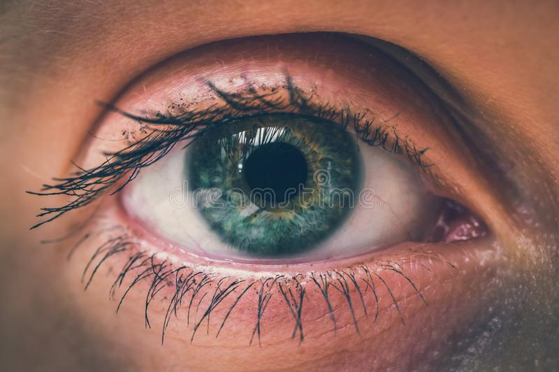 Detailed view of open eye of woman - retro style royalty free stock images