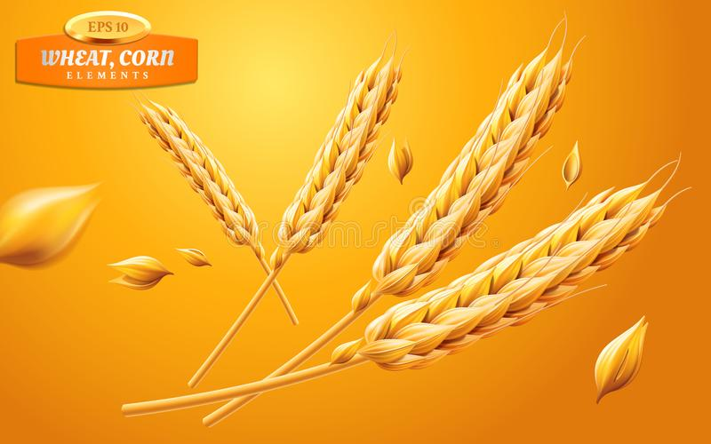 Detailed wheat ears, oats or barley isolated on a yellow background. Natural ingredient element. Healthy food or stock illustration