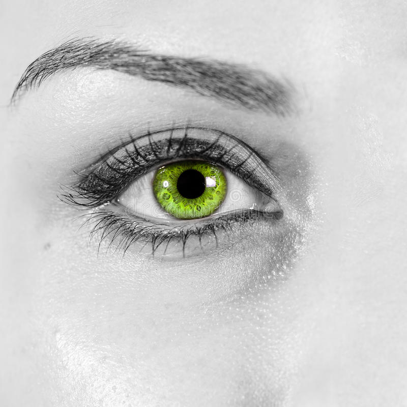 Detailed woman green eye close up stock photos