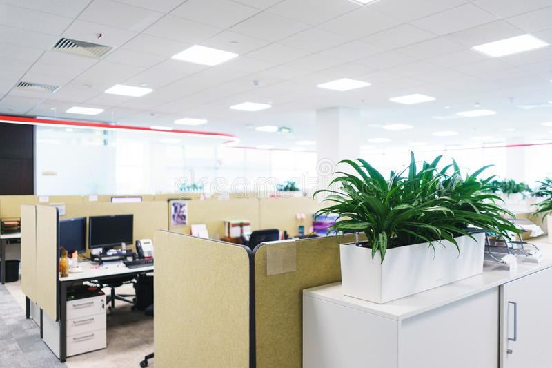Details des modernen Büros Innen- und leerer Arbeitsöffentlicher platz Grünpflanzen, Möbelteile für Angestellte lizenzfreie stockfotografie