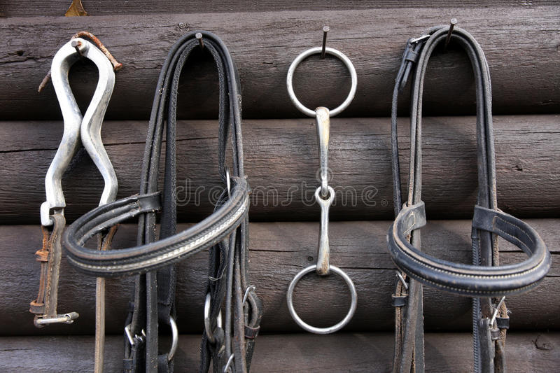 Download Details Of Diversity Used Horse Reins Stock Image - Image: 27818539