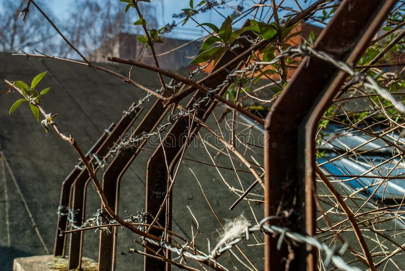 Details of iron fence, stone wall and trees stock photography