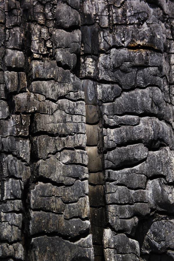 Details met gevormde oppervlaktetextuur van gebrand hout royalty-vrije stock afbeelding
