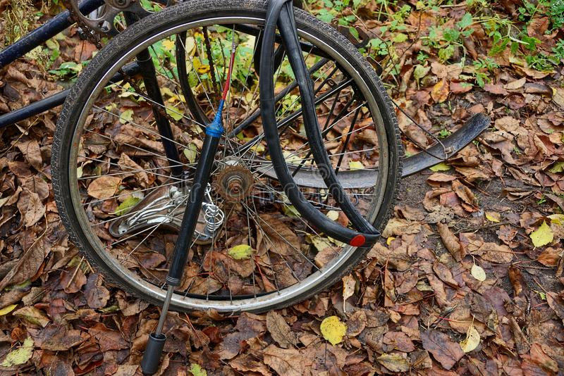 A bicycle wheel and a pump with a camera on the leaves royalty free stock images