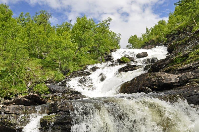 Details van mooie waterval stock fotografie