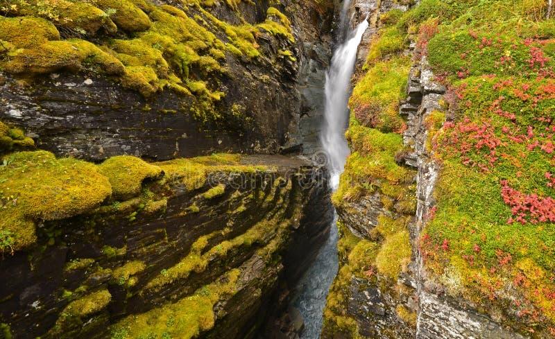 Details van mooie waterval royalty-vrije stock foto