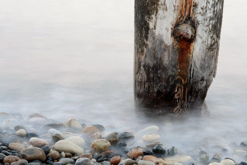 Details van zeewater met overzeese shells en stenen stock foto's