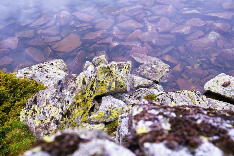 Details von purpurroten Sonnenuntergangreflexionen und -felsen mit grünen Flechten im See Bucura, ein Glazial- See in Retezat-Ber lizenzfreie stockbilder