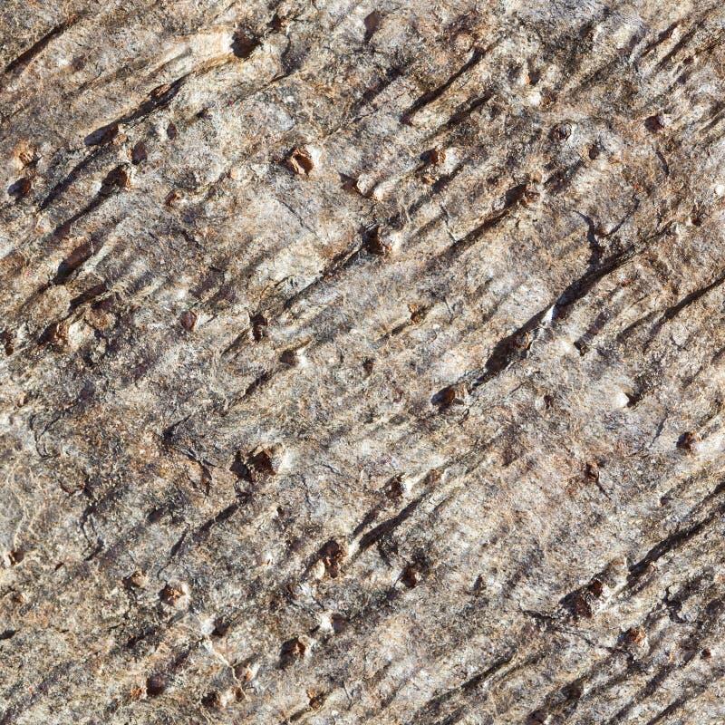 Detalhe áspero do fundo da textura da rocha ou da pedra, teste padrão abstrato imagens de stock royalty free