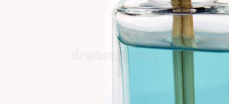 Detalhe azul do fragance foto de stock