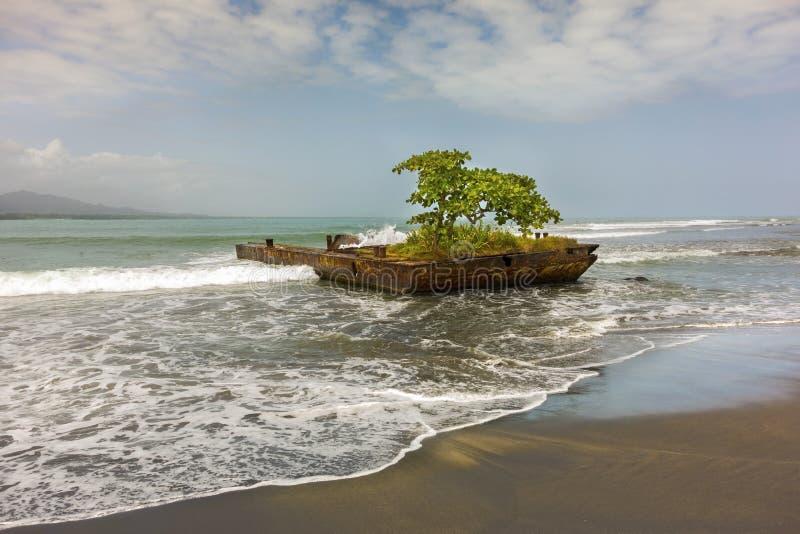 Detalhe Costa Rica da praia do mar de Puerto Viejo De Talamanca as Caraíbas fotos de stock royalty free
