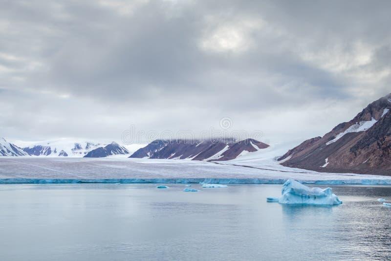 Córrego Da Ilha De Ellesmere Foto de Stock - Imagem de gelo, neve ...