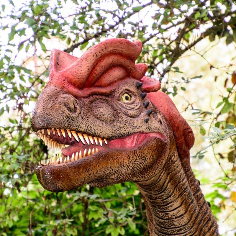 Detalhe da cabeça do Dilophosaurus foto de stock