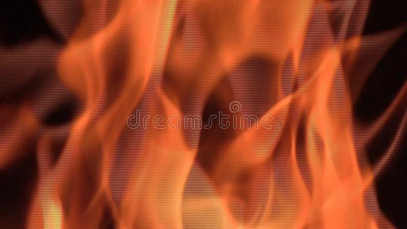 Detalhe da chama do fogo vídeos de arquivo