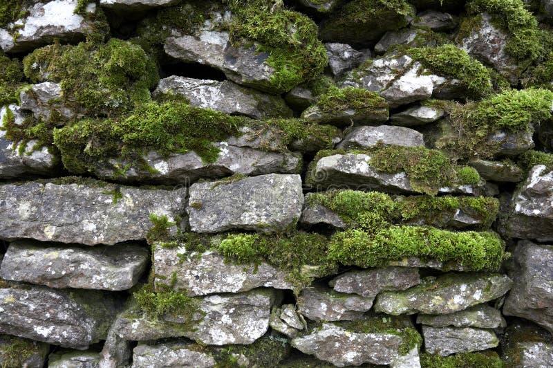 Detalhe da parede Drystone foto de stock royalty free