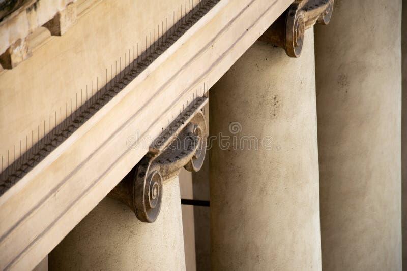 Detalhe da parte superior de uma coluna iônica que mostra a presença de pombo que intimida pontos imagem de stock royalty free