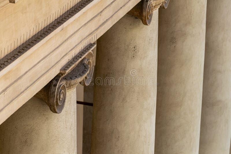 Detalhe da parte superior de uma coluna iônica que mostra a presença de pombo que intimida pontos foto de stock royalty free
