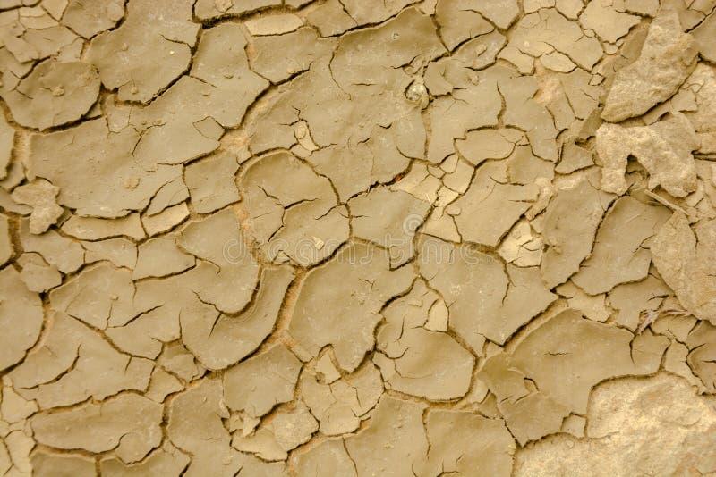 Detalhe da terra secada fotografia de stock royalty free