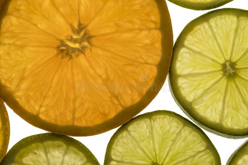 Detalhe da textura dos frutos fotografia de stock royalty free
