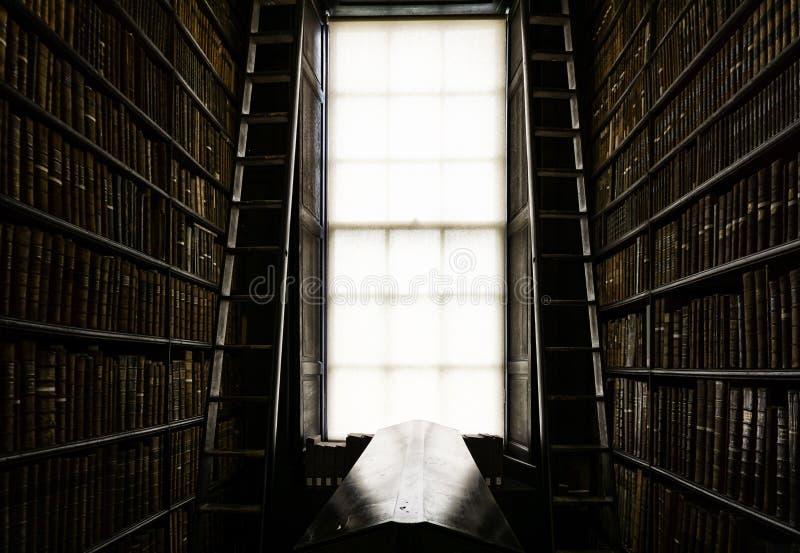 Detalhe de biblioteca cl?ssica velha fotografia de stock royalty free