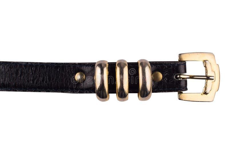 Detalhe de cinturão negro fêmea imagem de stock
