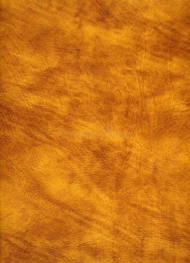 Detalhe de couro de Brown imagens de stock