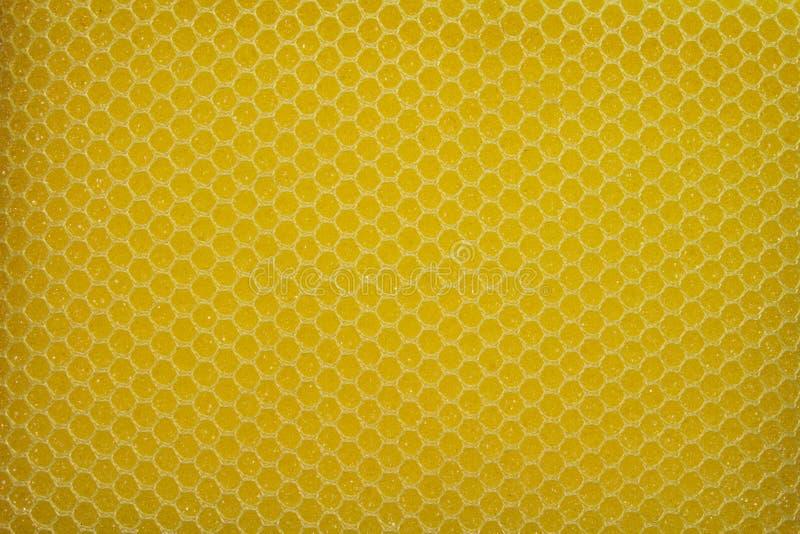 Detalhe de esponja da lavagem da louça imagens de stock