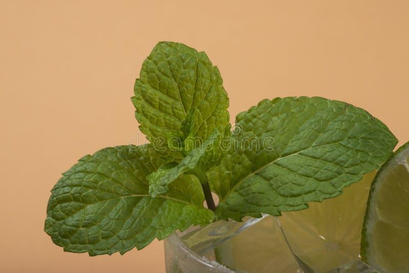 Detalhe de folha da hortelã dentro de um vidro do caipirinha imagens de stock