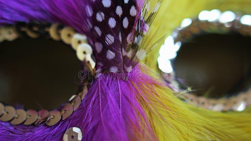 Detalhe de máscara cor-de-rosa e amarela do dominó do carnaval da pena com esboço verde da pena e as decorações jewellry douradas imagens de stock royalty free