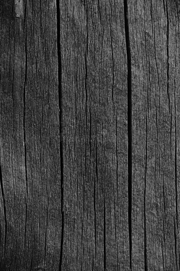Detalhe de madeira da textura de Grey Black Wood Tar Paint da placa da prancha, grande close up escuro envelhecido velho do macro imagens de stock royalty free