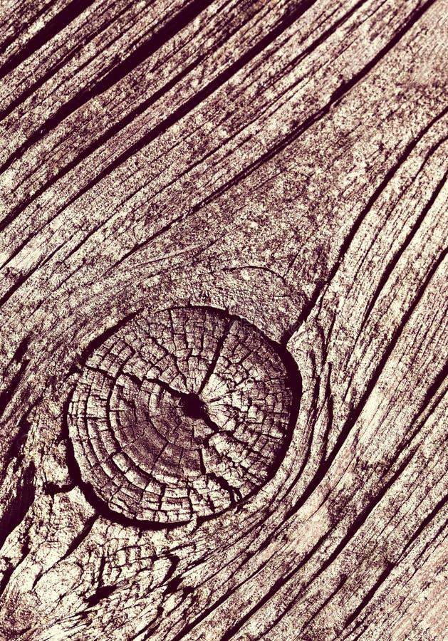Detalhe de madeira velho monocromático imagem de stock royalty free