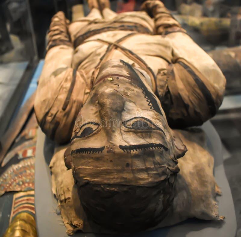 Detalhe de mamã egípcia antiga no museu britânico fotografia de stock