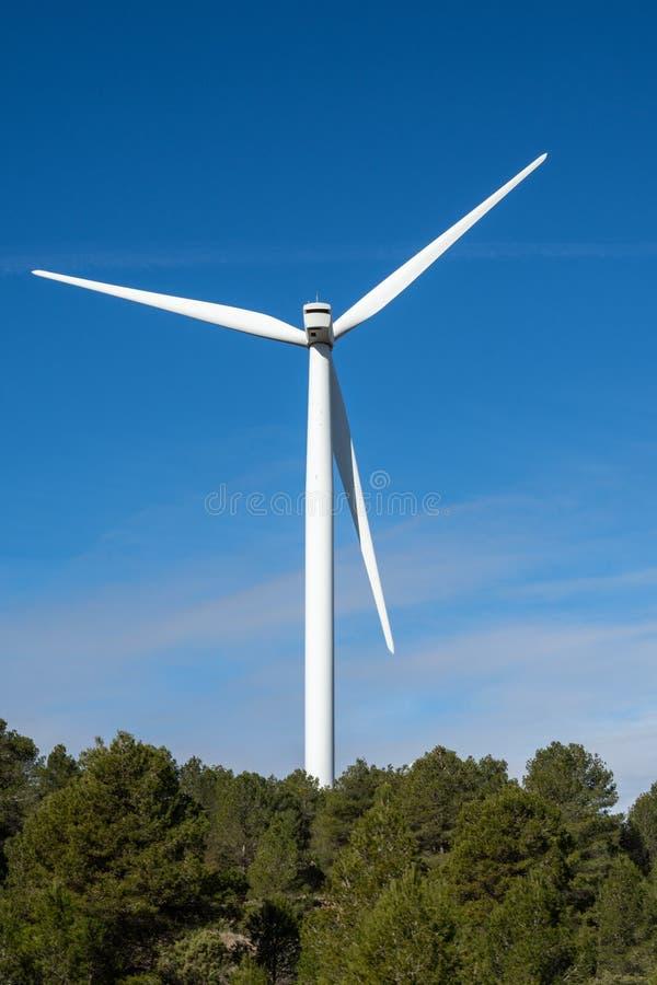 Detalhe de moinho de vento na floresta imagens de stock royalty free