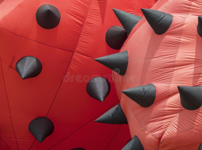Detalhe de papagaios estacionários vermelhos imagens de stock