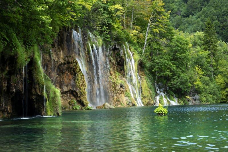 Detalhe de parque nacional de Plitvice fotografia de stock