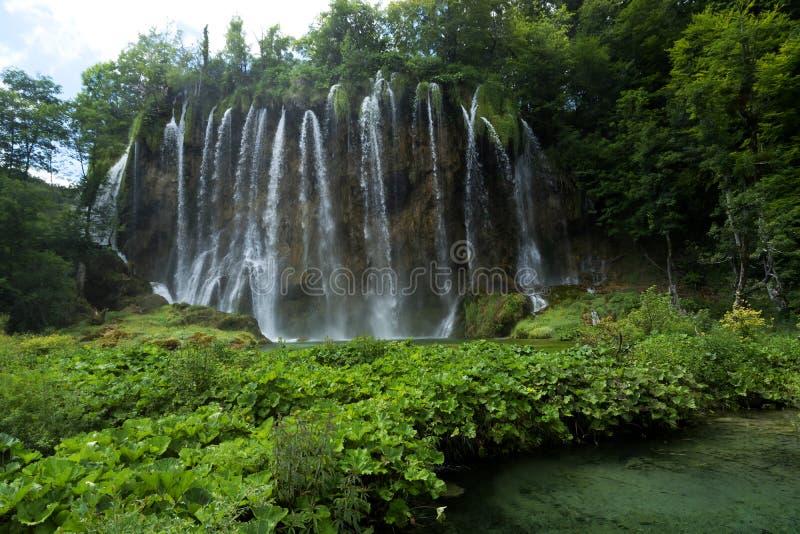 Detalhe de parque nacional de Plitvice imagens de stock
