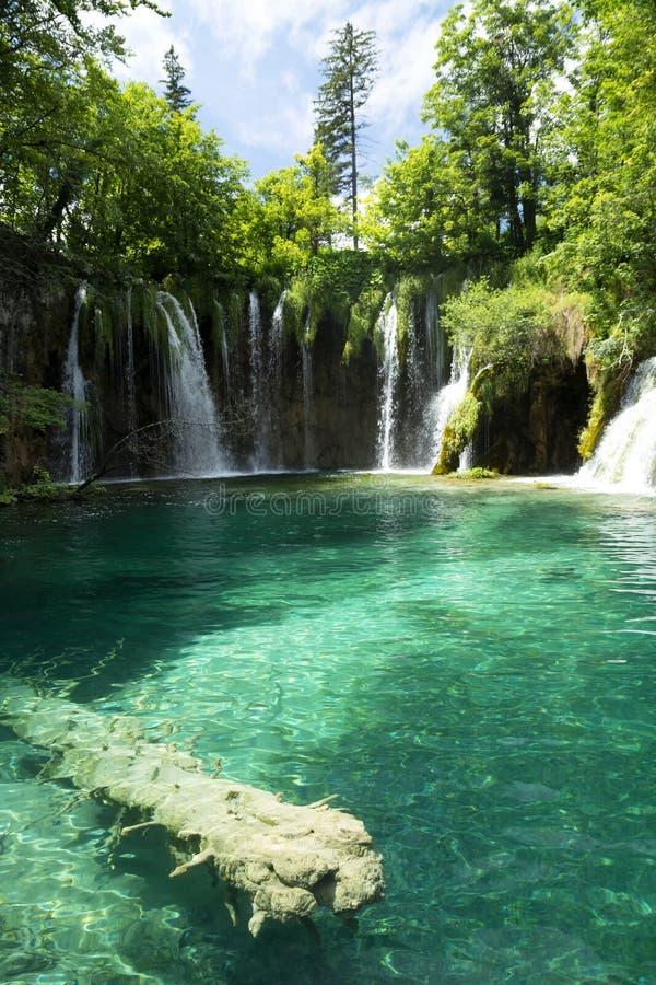 Detalhe de parque nacional de Plitvice fotos de stock